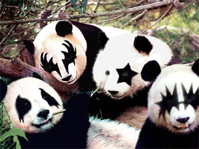 20040907_Panda
